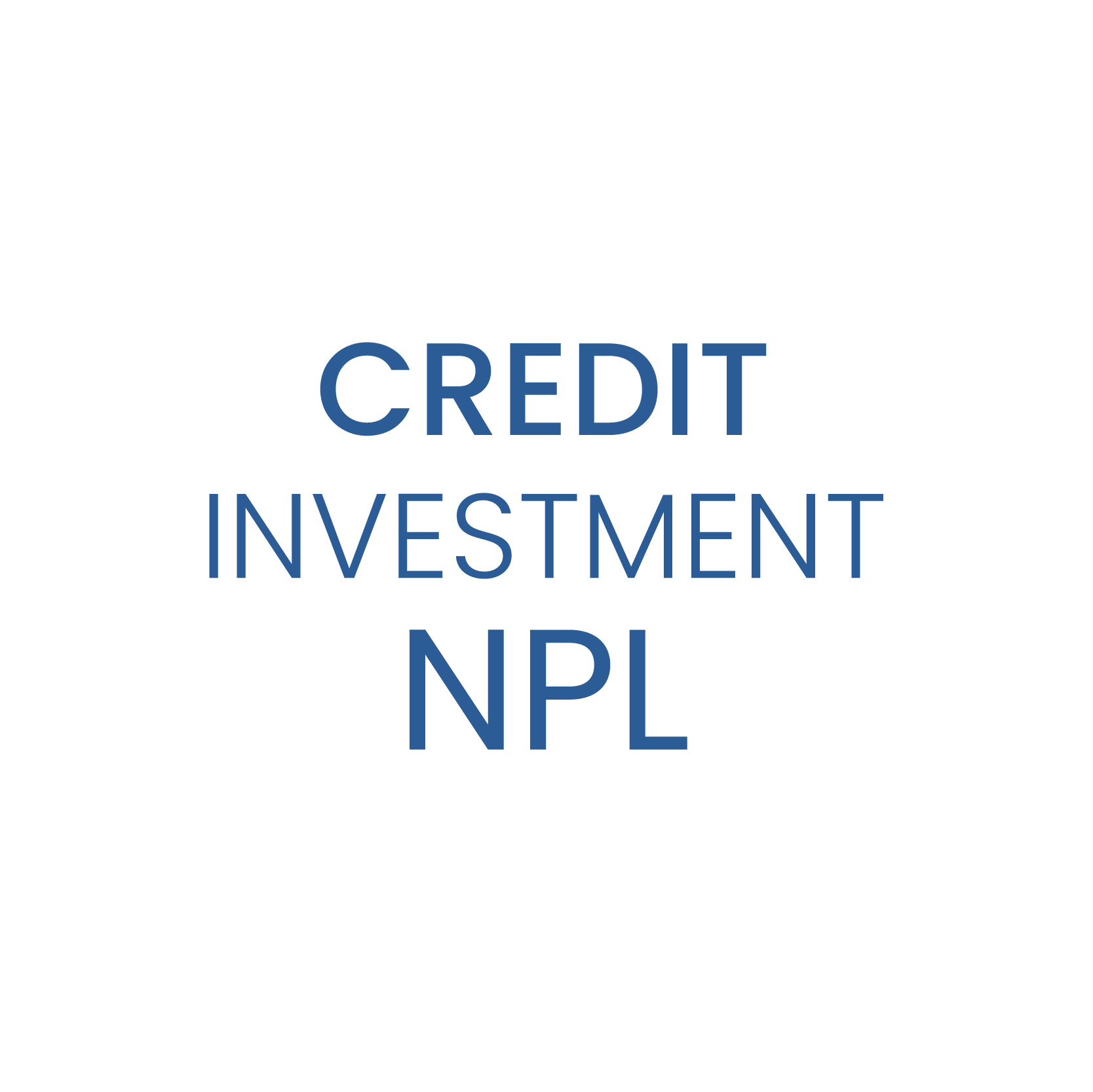 Credit Investment NPL